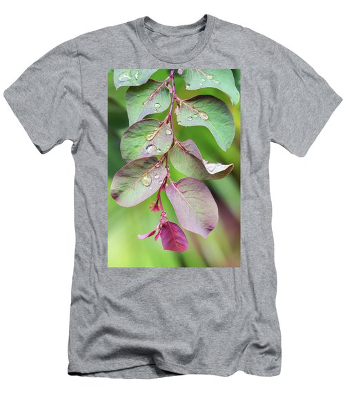 Leaves And Raindrops Men's T-Shirt (Athletic Fit)