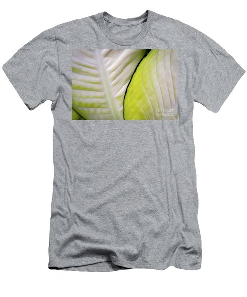 Leaves In White Men's T-Shirt (Athletic Fit)