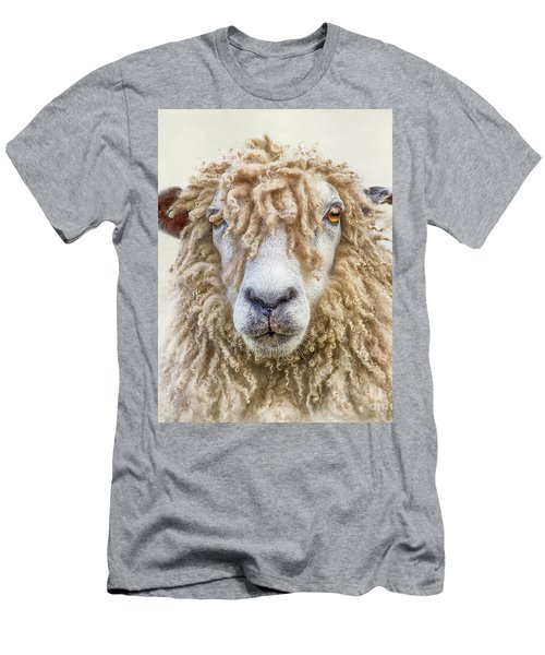 Leicester Longwool Sheep Men's T-Shirt (Slim Fit) by Linsey Williams