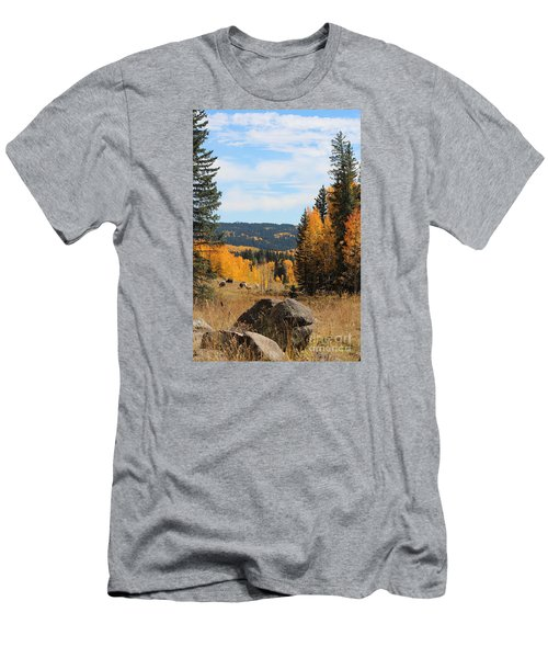 Leroux Creek Autumn In Colorado Men's T-Shirt (Athletic Fit)