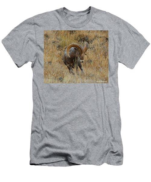 Let's Go II Men's T-Shirt (Athletic Fit)