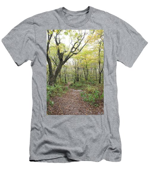 Light On Path Men's T-Shirt (Athletic Fit)