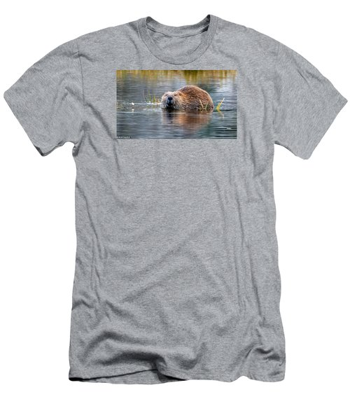 Lily Lake Beaver Men's T-Shirt (Athletic Fit)