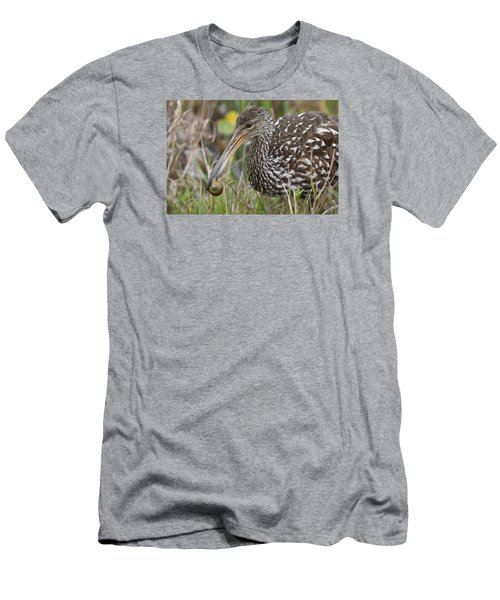 Limpkin, Aramus Guarauna Men's T-Shirt (Athletic Fit)