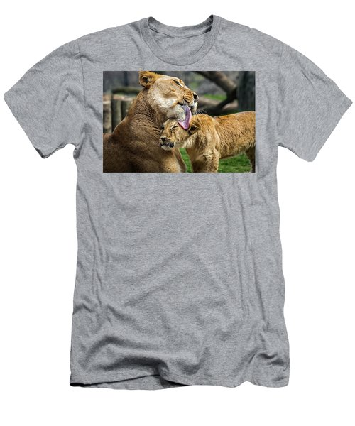 Lion Mother Licking Her Cub Men's T-Shirt (Athletic Fit)