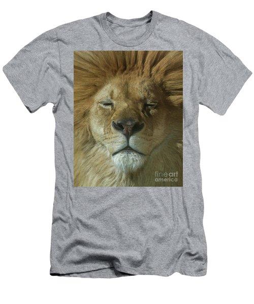 Lion Of Judah Men's T-Shirt (Athletic Fit)