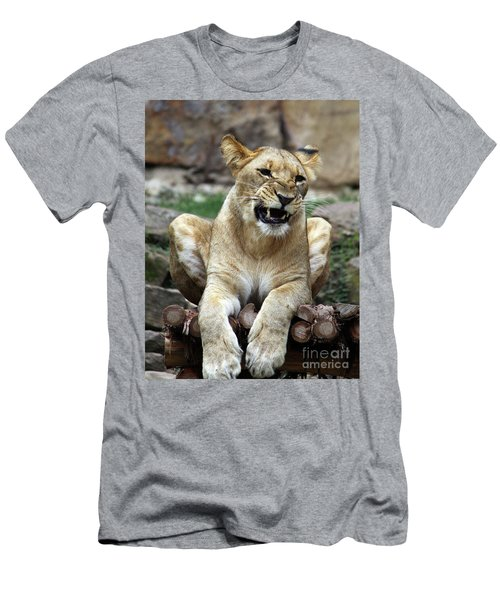 Lioness 2 Men's T-Shirt (Athletic Fit)