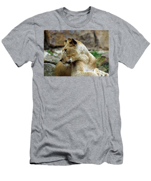 Lioness Men's T-Shirt (Slim Fit) by Inspirational Photo Creations Audrey Woods
