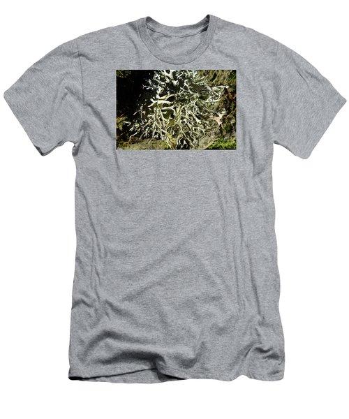 Little Labyrinth Men's T-Shirt (Athletic Fit)
