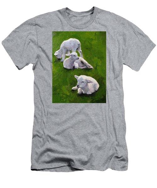 Little Lambs Men's T-Shirt (Athletic Fit)