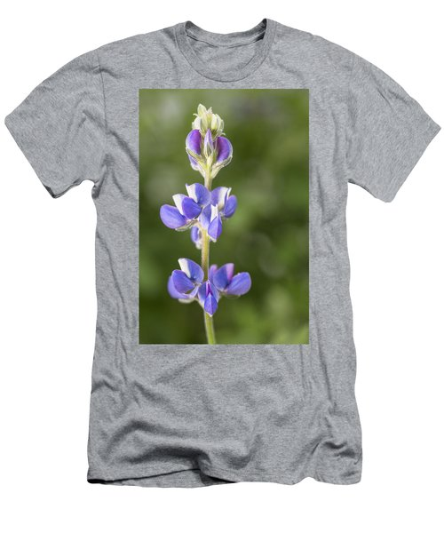 Little Lupine Men's T-Shirt (Athletic Fit)