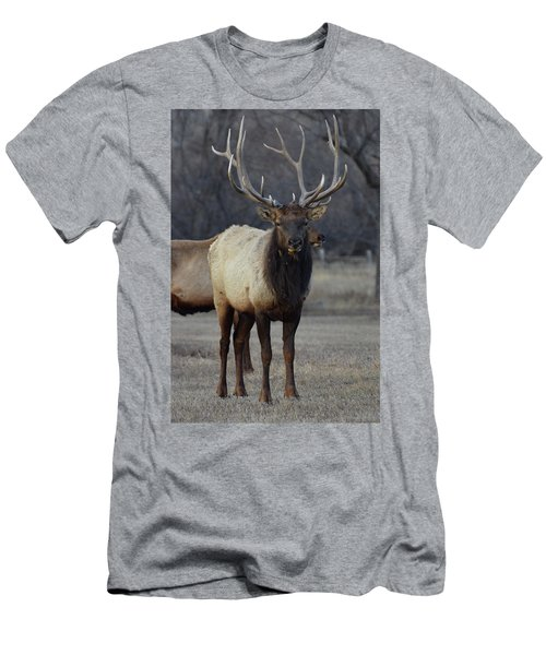 Men's T-Shirt (Slim Fit) featuring the photograph Lone Bull by Billie Colson