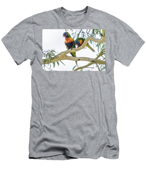 Men's T-Shirt (Athletic Fit) featuring the photograph Lorrikeets 01 by Werner Padarin