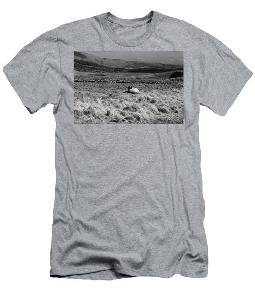 Maam Valley Men's T-Shirt (Athletic Fit)