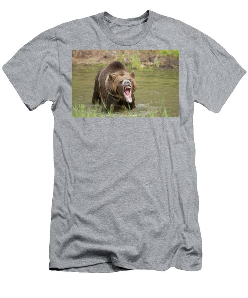 Mad Bear Men's T-Shirt (Athletic Fit)