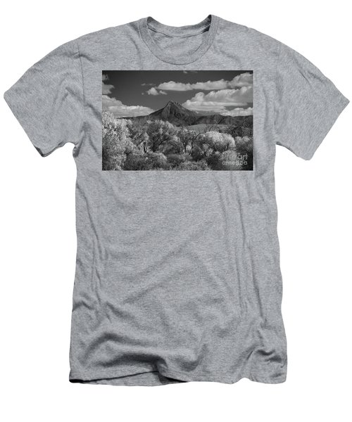 Majestic Peak Men's T-Shirt (Slim Fit) by Vicki Pelham