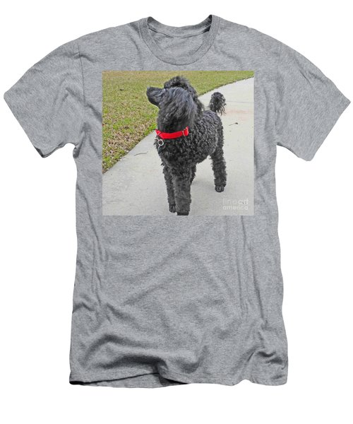 Maggie On Bird Watch Men's T-Shirt (Athletic Fit)