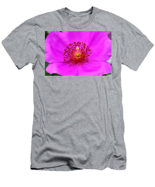 Magic Magenta - Calandrinia Men's T-Shirt (Athletic Fit)