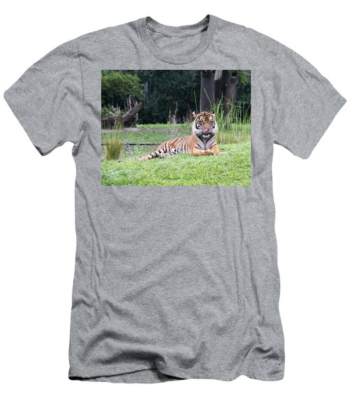 Men's T-Shirt (Athletic Fit) featuring the photograph Magnificent Creature by Vadim Levin
