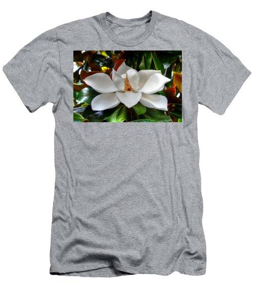 Magnolia Bloom Men's T-Shirt (Athletic Fit)