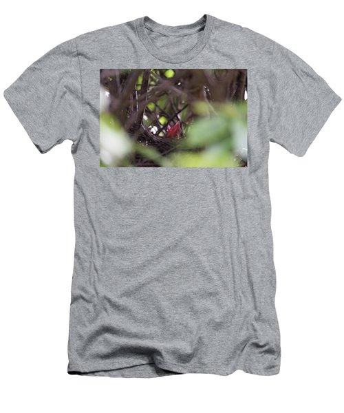 Magpie Nestling Men's T-Shirt (Athletic Fit)