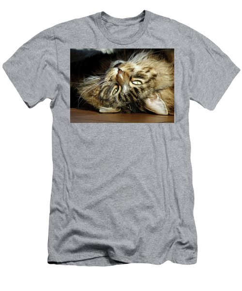 Men's T-Shirt (Athletic Fit) featuring the photograph Main Coon, Crazy. by Roger Bester