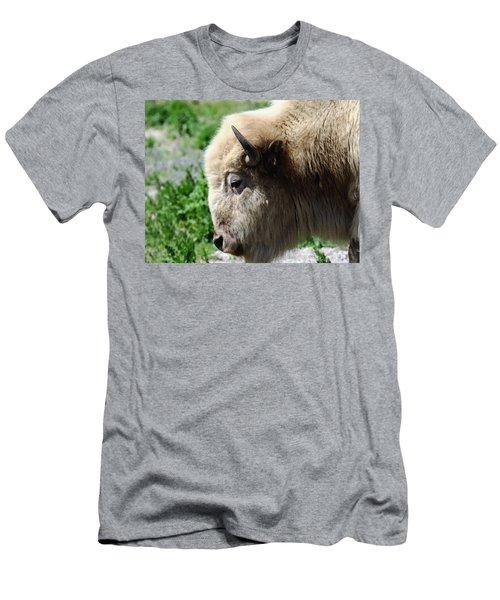 Majesty Men's T-Shirt (Athletic Fit)