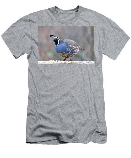 Male California Quail Men's T-Shirt (Slim Fit) by Sean Griffin