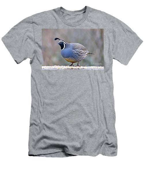 Male California Quail Men's T-Shirt (Athletic Fit)