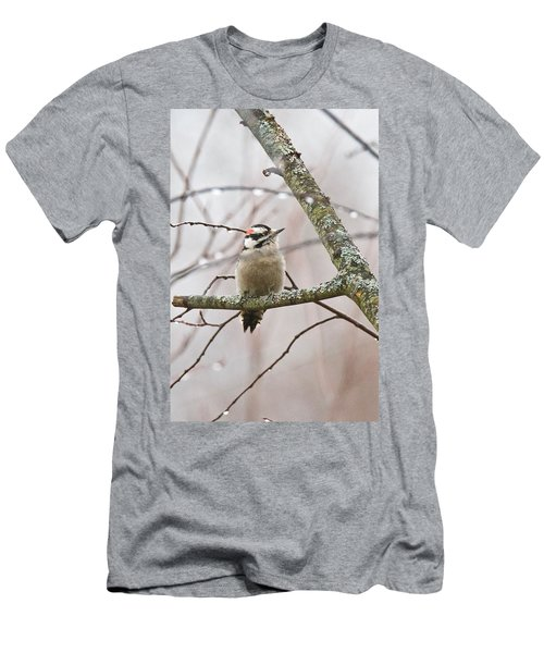 Male Downey Woodpecker Men's T-Shirt (Athletic Fit)