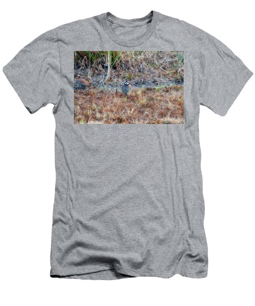 Men's T-Shirt (Athletic Fit) featuring the photograph Male Quail In Field by Dan Friend