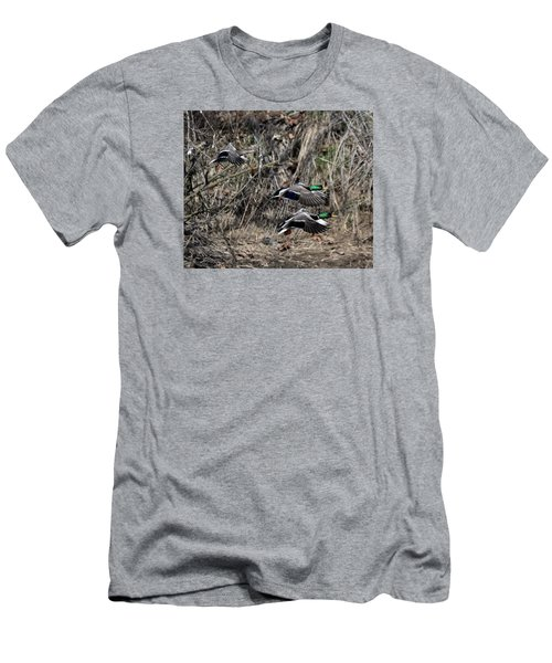 Men's T-Shirt (Slim Fit) featuring the photograph Mallard Ducks 1 by David Lester