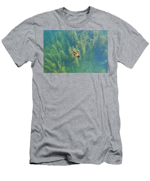 Mallard Over Seaweed Men's T-Shirt (Athletic Fit)