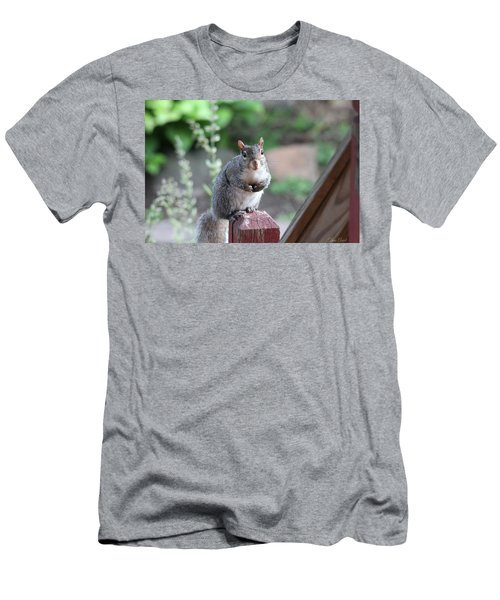 Men's T-Shirt (Athletic Fit) featuring the photograph Mama Squirrel by Trina Ansel