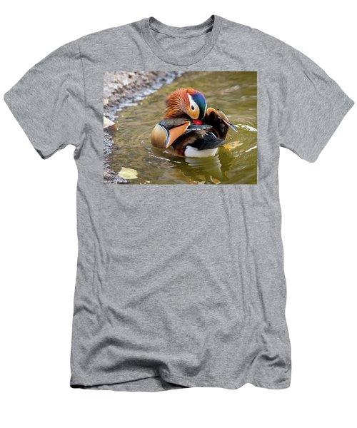 Mandarin Duck Preening Feathers Men's T-Shirt (Athletic Fit)