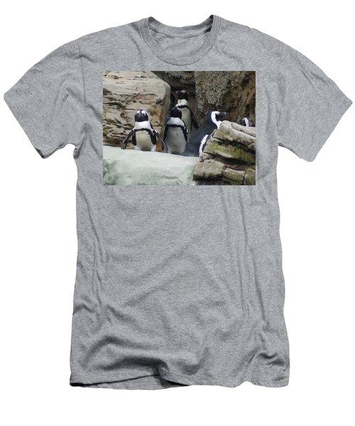 March Of The Penguins Men's T-Shirt (Slim Fit) by B Wayne Mullins