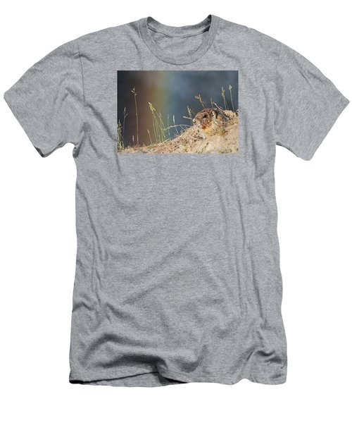 Marmot And Rainbow Men's T-Shirt (Athletic Fit)