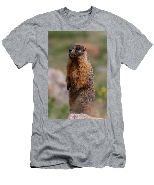 Men's T-Shirt (Athletic Fit) featuring the photograph Marmot by Gary Lengyel