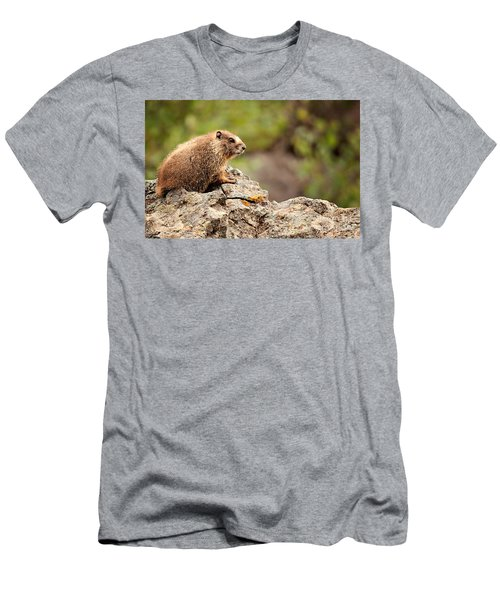 Marmot Men's T-Shirt (Slim Fit) by Lana Trussell
