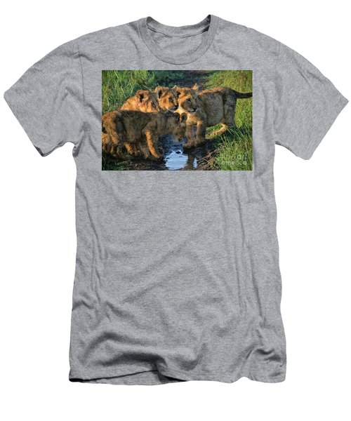 Masai Mara Lion Cubs Men's T-Shirt (Athletic Fit)