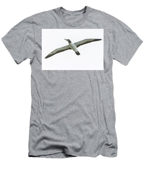 Men's T-Shirt (Athletic Fit) featuring the photograph Masked Booby 02 by Werner Padarin