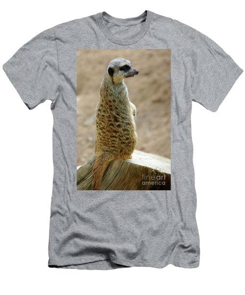 Meerkat Portrait Men's T-Shirt (Slim Fit) by Carlos Caetano