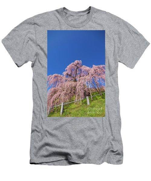 Men's T-Shirt (Athletic Fit) featuring the photograph Miharu Takizakura Weeping Cherry32 by Tatsuya Atarashi