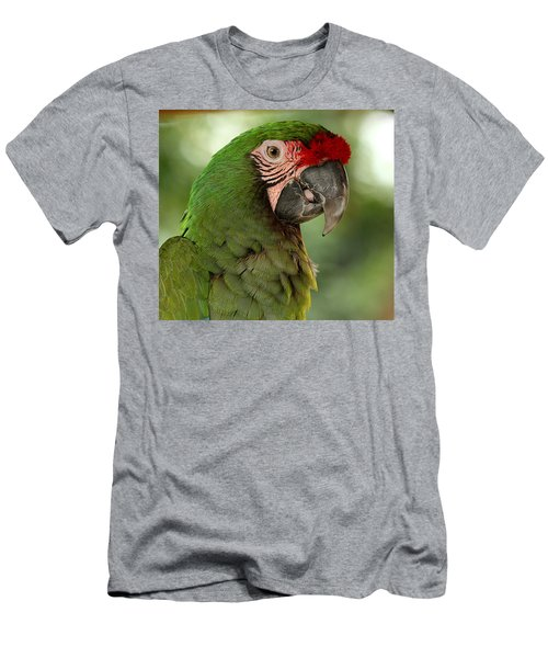 Military Macaw Men's T-Shirt (Athletic Fit)
