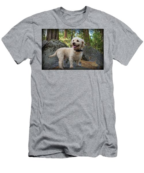 Mini Poodle Men's T-Shirt (Athletic Fit)