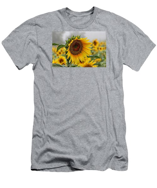 Misty Morning Sunflower Men's T-Shirt (Slim Fit) by Karen McKenzie McAdoo
