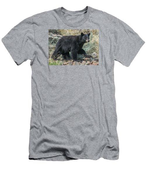 Momma Bear Walking Men's T-Shirt (Slim Fit) by Stephen  Johnson