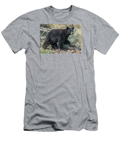 Momma Bear Walking Men's T-Shirt (Athletic Fit)