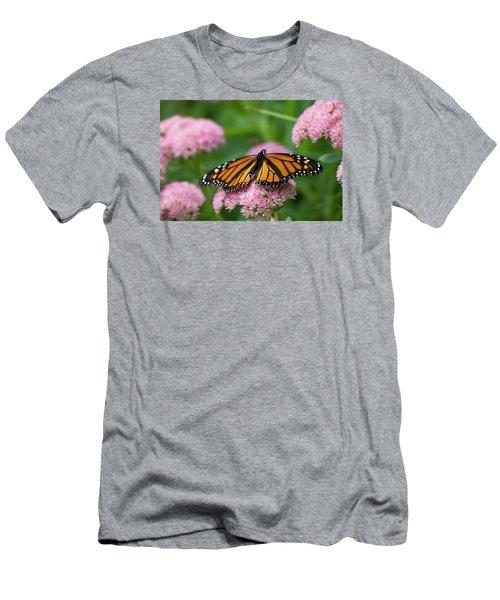 Monarch On Sedum Men's T-Shirt (Athletic Fit)