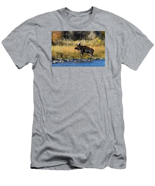 Moose X-ing Men's T-Shirt (Athletic Fit)